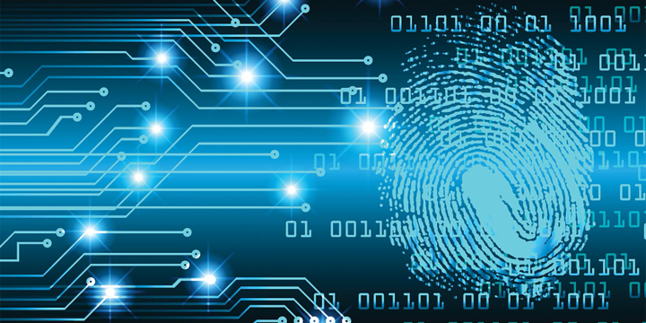 Cyber Tops All Other Risk Concerns for Businesses of All Sizes